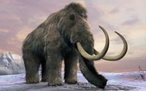 120872308_woolly-mammoth-news-large_trans_nvbqzqnjv4bq0k4ycdl3g4cbffqvorikeluatf7ml2dwp4pd_o4306u